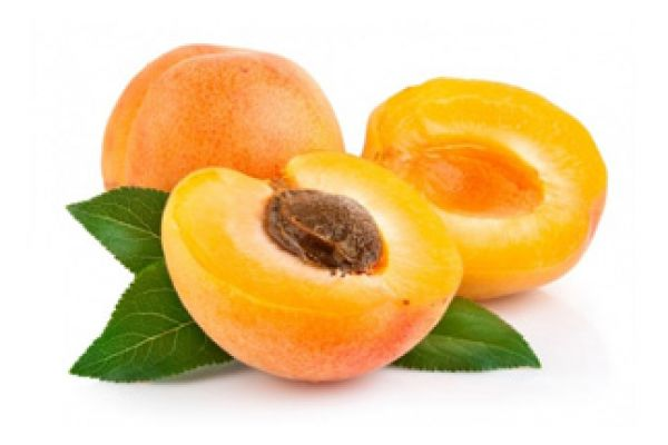 apricot14A85199-8A83-8AF5-BED6-AA86060394E5.jpg