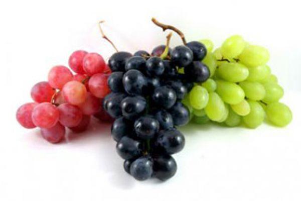 grape0522A8A2-9F0B-4B7F-10F5-461C5CE15AEC.jpg
