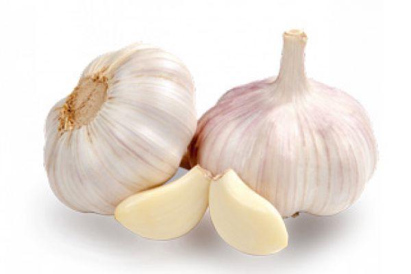 garlic82686CFF-0455-91B5-5560-8463DC38A9DE.jpg