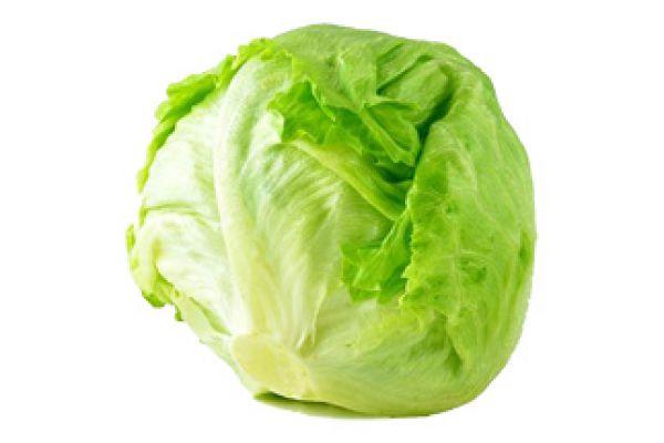 iceberg-lettuceB5563B3A-E923-8757-FEA1-281258E5997C.jpg