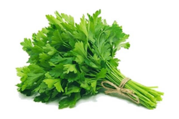 parsley8B76E36A-5C3D-F3FC-F3A3-ACDCB48E86C9.jpg