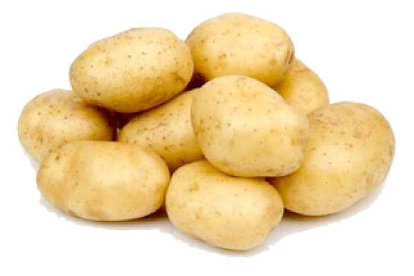 potato07D3D82E-C855-1D29-6A57-6538F07AB74B.jpg