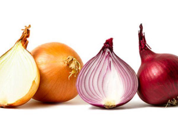 onion56684999-6932-C63E-540E-31EC2E38C708.jpg